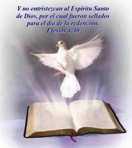 espiritu-santo-4